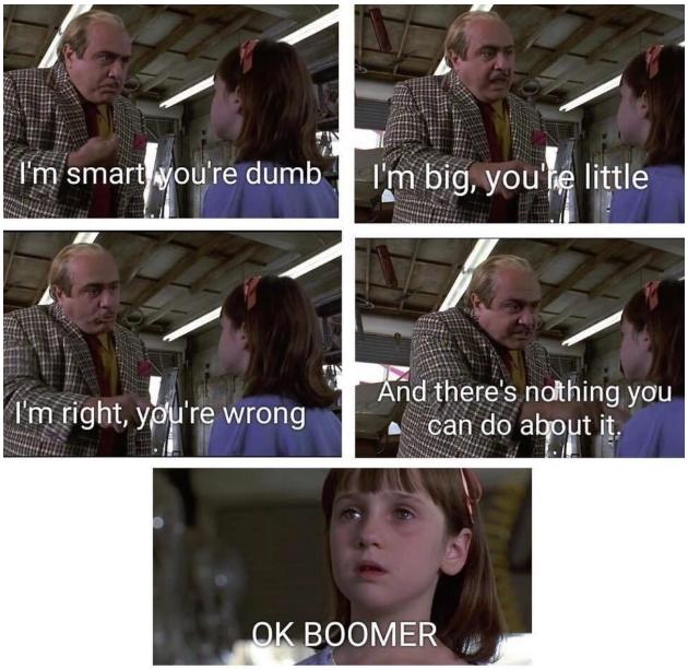 OK Boomer meme 2020